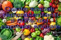 QUOTA 50% DI SOCIETÀ COMMERCIO PRODOT...